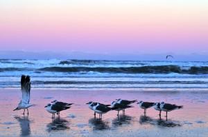 Daytona Beach 2012